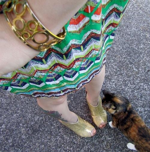cuff, dress, cat