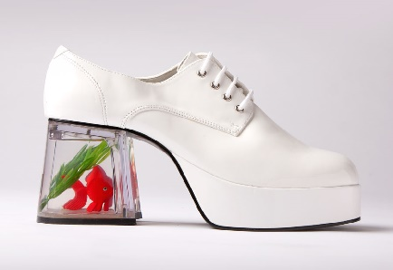 goldfish shoes